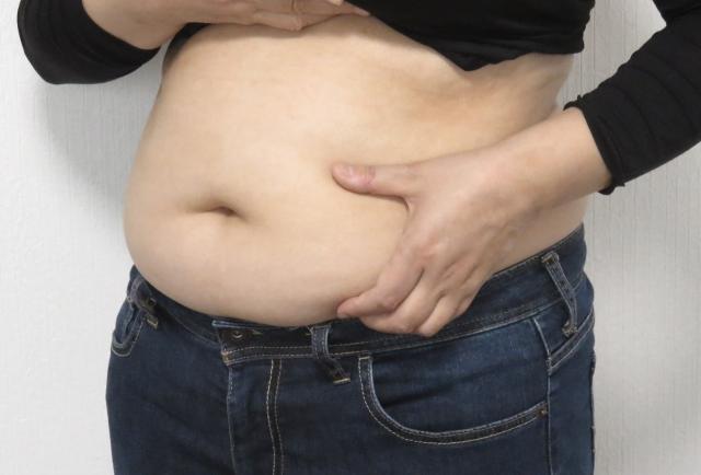 の お腹 落とす 周り を 皮下 脂肪
